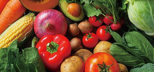 流通する野菜