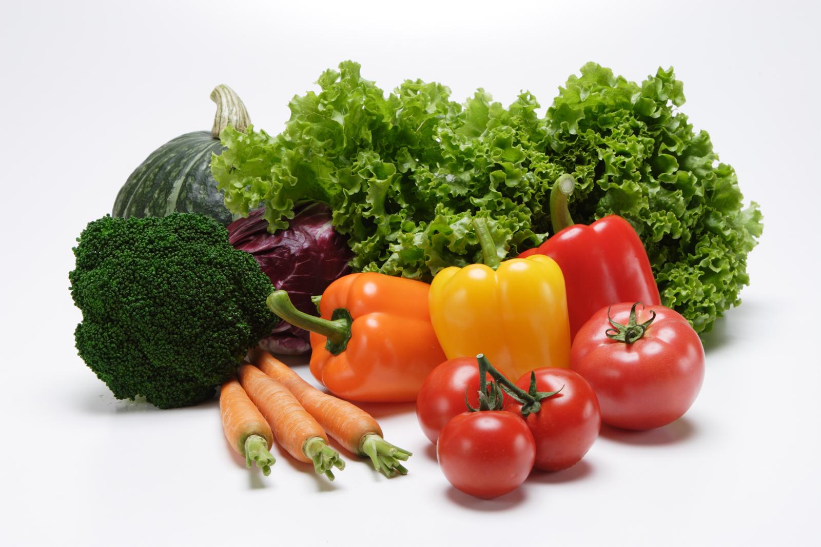 収穫した野菜のイメージ
